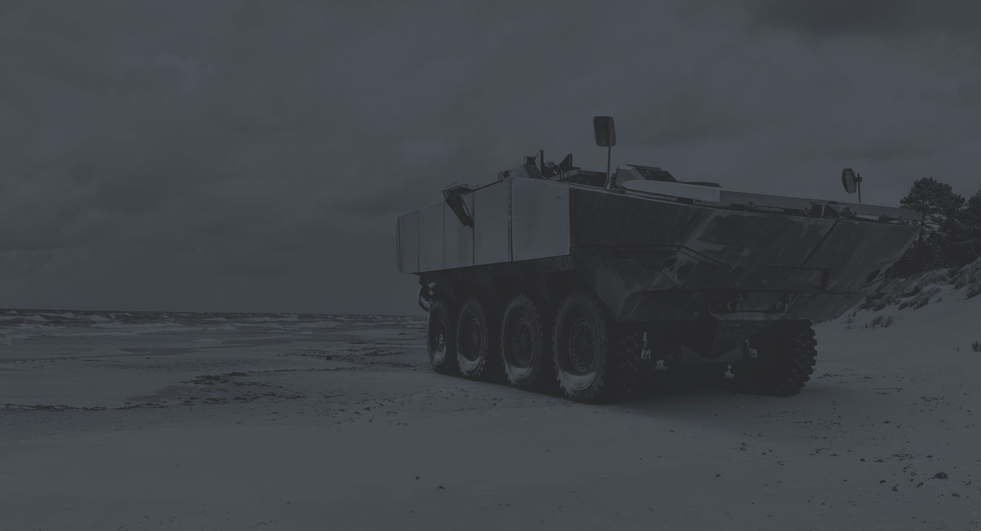 SAIC ACV On Beach Dark Duotone